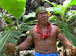 Kokosnuss richtig aufmachen