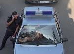 Besoffende Frau randaliert im Polizeiauto